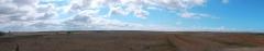 Stepní krajina severního Krymu