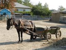 Venkovské taxi, Moldávie