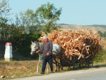 Vesnická doprava v Moldávii